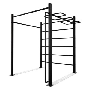 C-RIG2 Outdoor/Indoor Calisthenics RIG Lacertosus