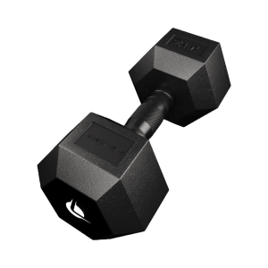 PRO HEX Rubber Dumbbell 15 Kg Hexagonal Dumbbells Lacertosus