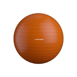 Swiss Ball/ Gym Ball 55 cm